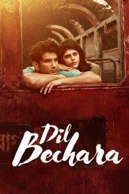 Dil Bechara (2020) Hindi