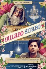 Gulabo Sitabo (2020) Hindi