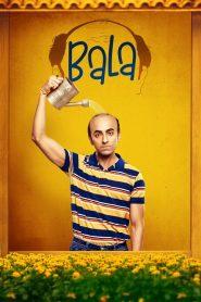 Bala (2019) Hindi