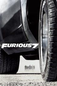 Furious 7 (2015) Hindi Dubbed