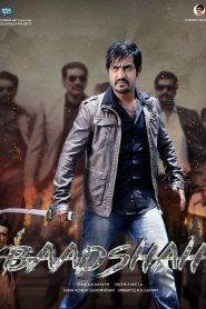 Rowdy Baadshah (2013) South Hindi Dubbed
