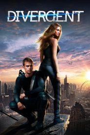 Divergent (2014) Hindi Dubbed