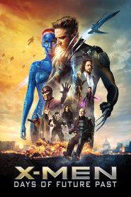 X-Men Days of Future Past (2014) Hindi Dubbed