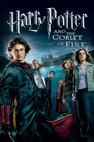 Harry Potter and the Goblet of Fire (2005) Hindi Dubbed