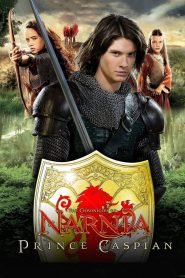 The Chronicles of Narnia Prince Caspian (2008) Hindi Dubbed