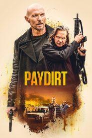 Paydirt (2020) Hindi Dubbed