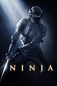 Ninja (2009) Hindi Dubbed