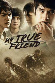My True Friend (2012) Hindi Dubbed
