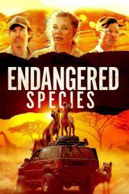 Endangered Species (2021) English