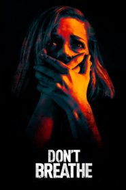 Don't Breathe (2016) Hindi Dubbed