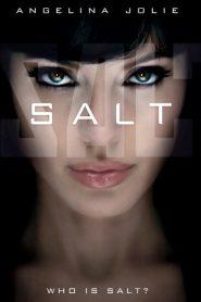 Salt (2010) Hindi Dubbed