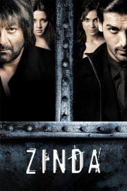Zinda (2006) Hindi