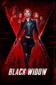 Black Widow (2021) English