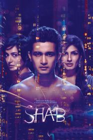 Shab (2017) Hindi