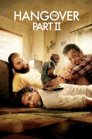 The Hangover Part 2 (2011) Hindi Dubbed