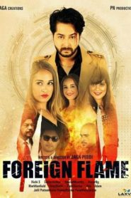 Foreign Flame 2021 Hindi