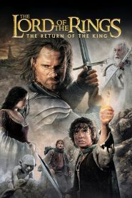 The Lord of the Rings The Return of the King Hindi Dubbed